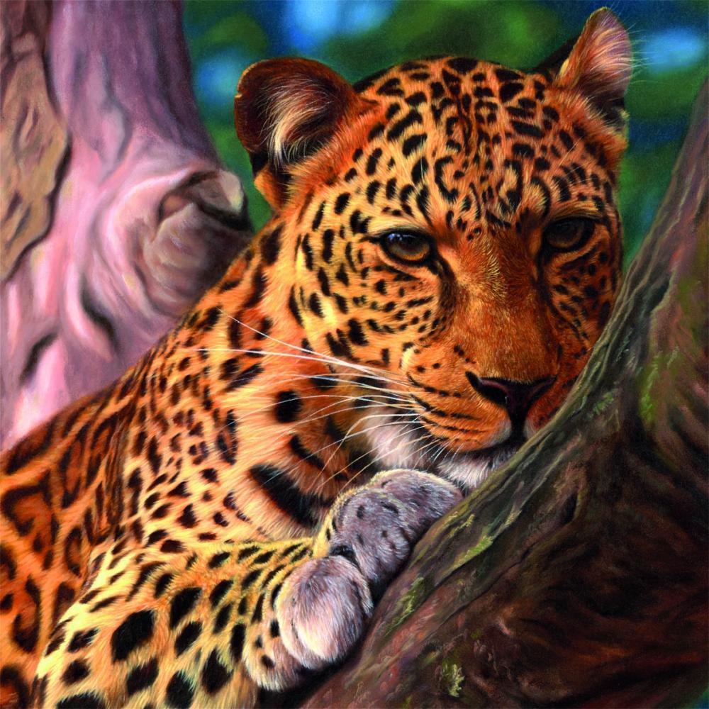 Puzzle Leopard, 1111 piese