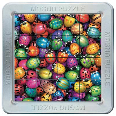 Puzzle magnetic 3D Gandeceii