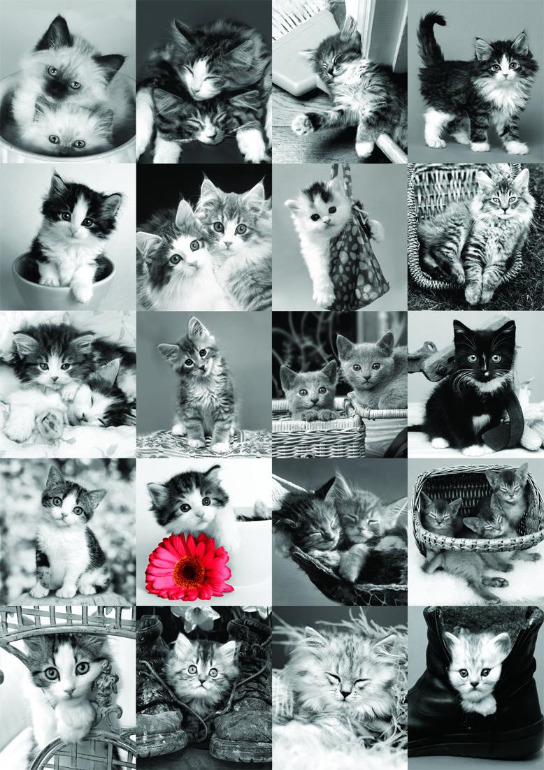 Puzzle pisici, 1500 pcs.