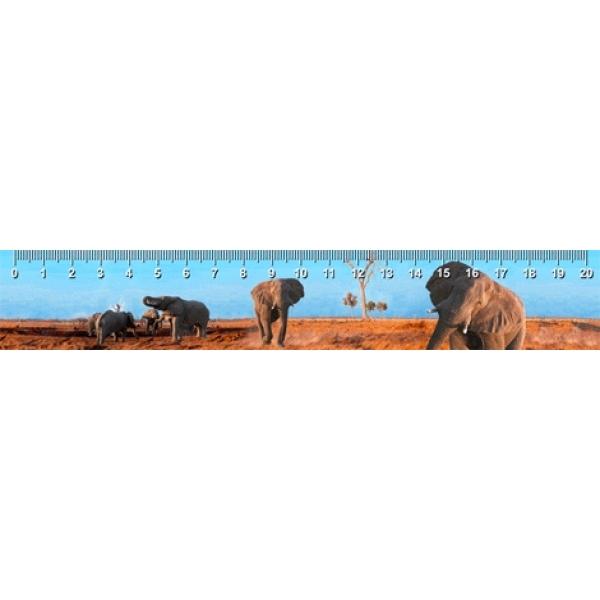Rigla 3D, Elefanti in Botswana