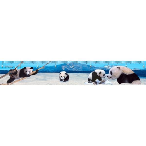 Rigla 3D, Urs Panda