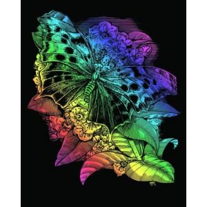 Set creativ gravura Fluture - curcubeu