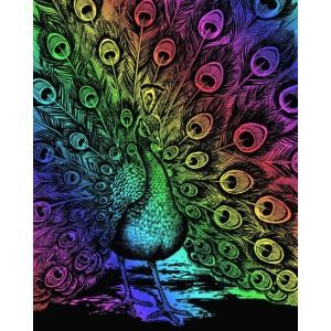 Set creativ gravura Paun - curcubeu