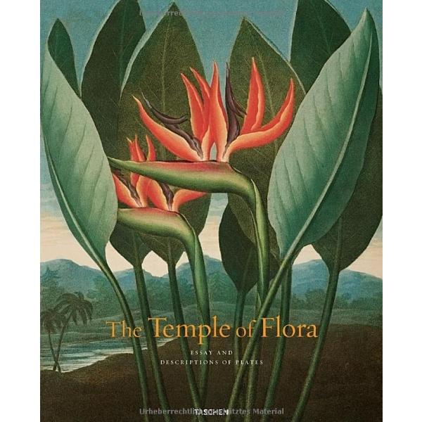 Thornton, Temple of Flora, Werner Dressendorfer