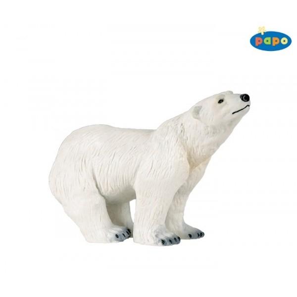 zzUrs polar