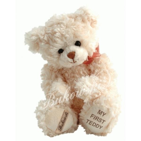 Ursuletul Teddy