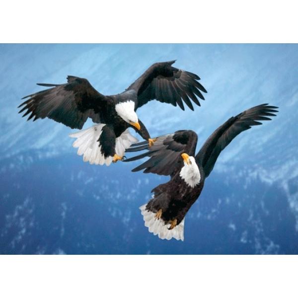 Vedere 3D, Vulturi