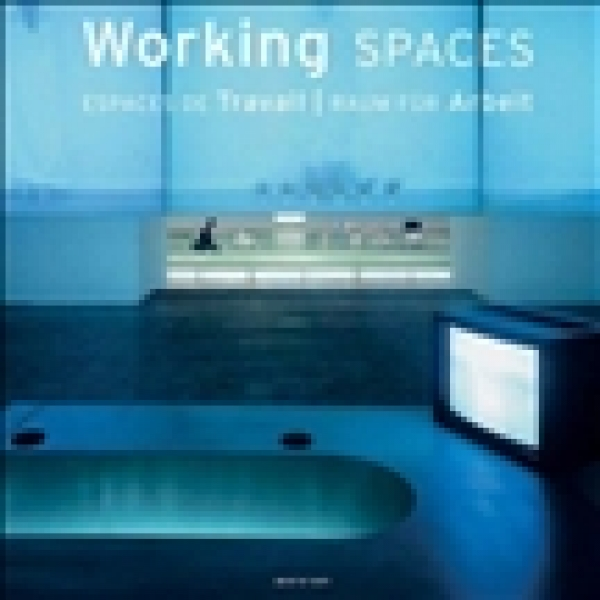 Working Spaces, Simone Schleifer