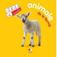ANIMALE DE LA FERMA. BEBE INVATA