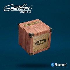 Boxa porabila Bluetooth Smartphone