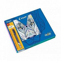 Set Frixion,5linere+carte colorat,model2