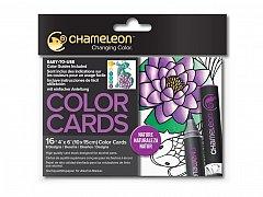 Carduri pt colorat Chameleon,16buc,Nature
