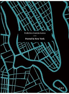 POETUL LA NEW YORK