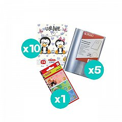 Set 10 caiete tip I + coperti + etichete
