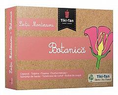 Lectii Montessori - Botanica