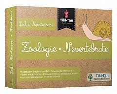 Lectii Montessori - Zoologie: Nevertebrate