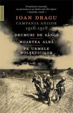 Campania anilor 1916?1918