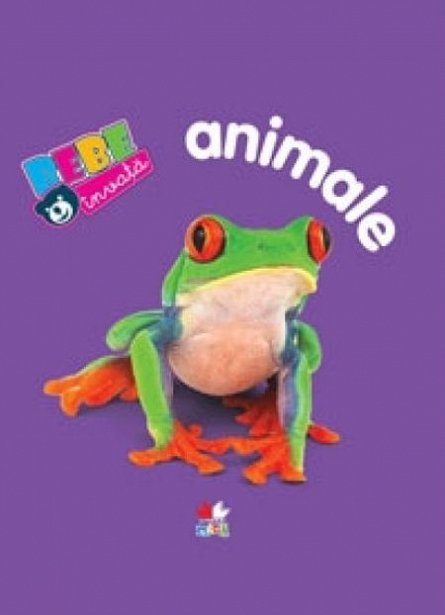 ANIMALE. BEBE INVATA