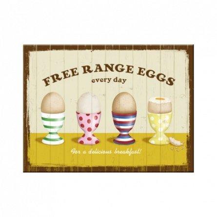 MAGNET FREE RANGE EGGS