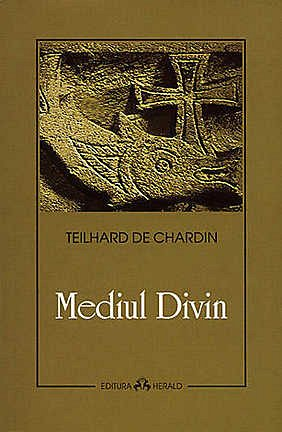 MEDIUL DIVIN