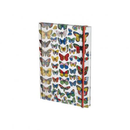 Agenda A6,144p,Plaat met vlinders