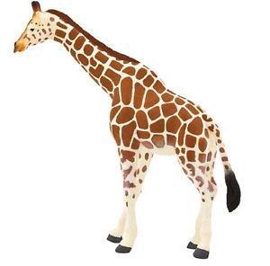 Figurina Girafa adulta, Mojo
