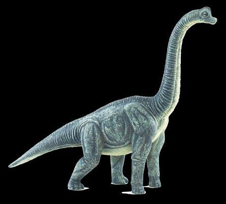 Figurina Brachiosaurus, Mojo