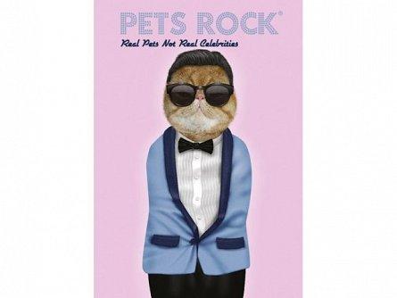 Caiet A4,42file,Pets Rock,dictando