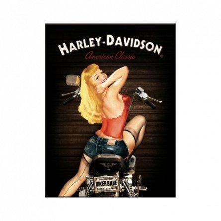 NA Magnet 14333 Harley-Davidson Biker Babe