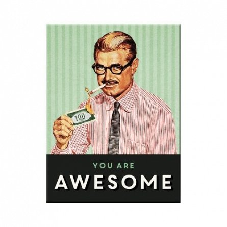 NA Magnet 14340 You are Awesome