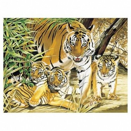 Pictura pe numere,Reeves,senior,Tiger&Cubs