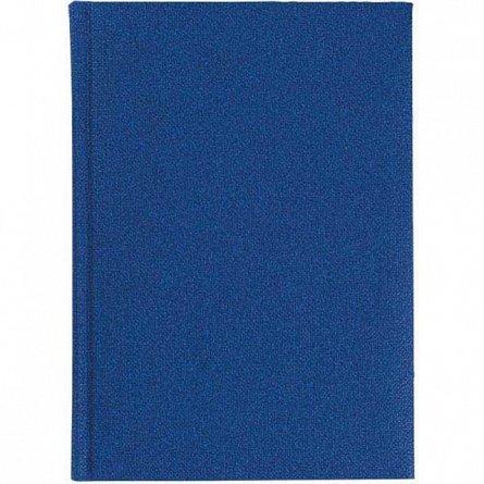 Agenda 17x24cm,nedatata,Delhi,320p,albastru