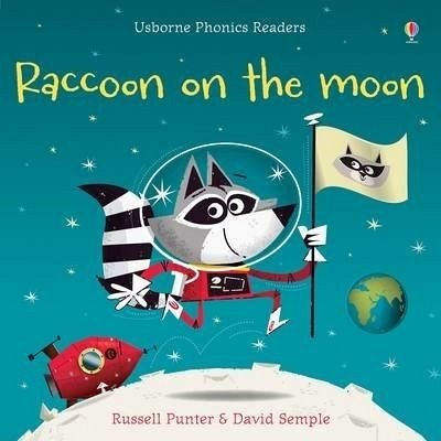 RACOON ON THE MOON