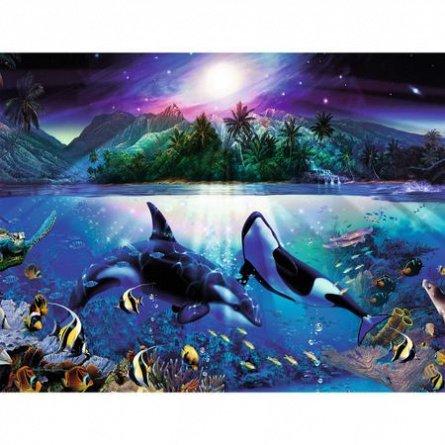 Puzzle Mister sub apa,2000pcs