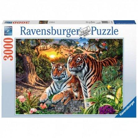 Puzzle Tigri,3000pcs