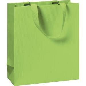 Punga cadou 18x8x21cm,One Colour,verde deschis