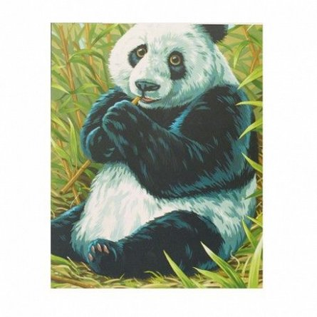 Pictura pe numere,Reeves,Panda
