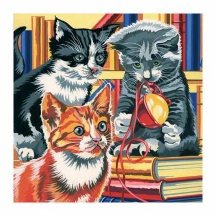 Pictura pe numere,Reeves,Kitten On Books
