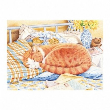 Pictura pe numere,Reeves,Marmalade Cat