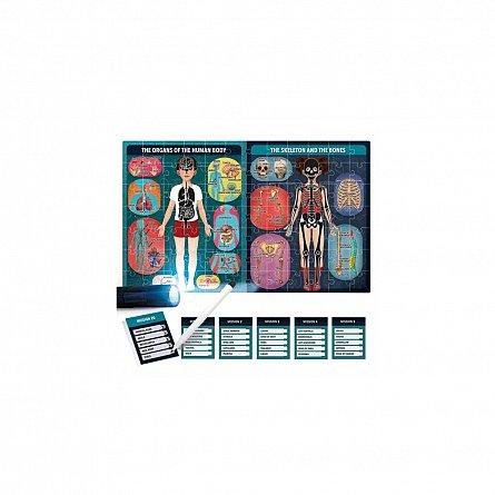 Puzzle Headu - Puzzle radiografia corpului uman