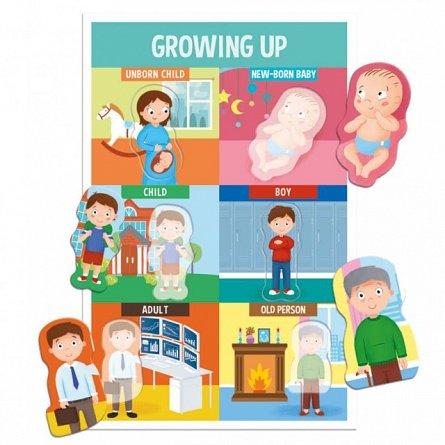 Joc educativ Headu - Montessori, sa invatam partile corpului!