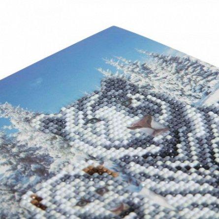 Set creativ cu cristale,Tigri albi in zapada
