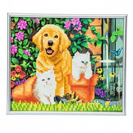 Set creativ cu cristale,in rama foto,Cainele si pisica