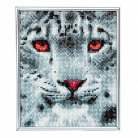 Set creativ cu cristale,in rama foto,Leopard in zapada