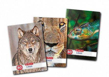 Caiet A4,80file,Animals,matematica