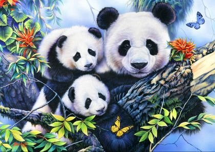 Puzzle Bluebird - Panda Family, 1.000 piese (70079)