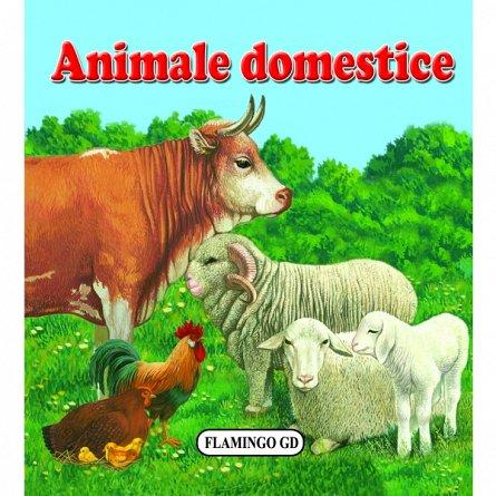 ANIMALE DOMESTICE - PLIATA