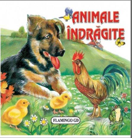 ANIMALE INDRAGITE - PLIATA