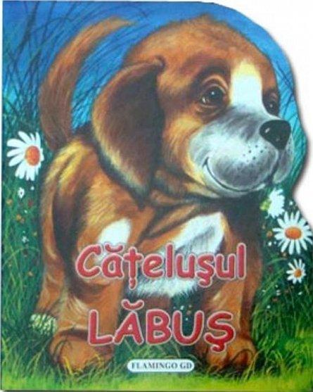 CATELUSUL LABUS