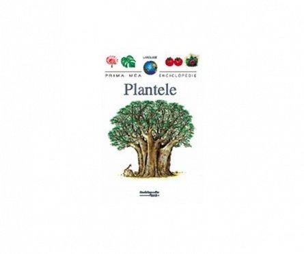 PME - PLANTELE-2007